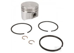 Kit Piston complet standard Briggs & Stratton 499960