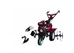 Motocultor profesional pe benzina 7 CP, 2+1 viteze RD-T03 Raider plus rarita si plug de cartofi