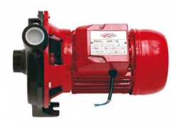 Pompa de suprafata pentru apa curata 750 W Raider Power Tools RD-CPM158